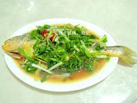 清蒸大黃魚