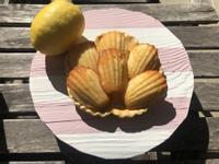 檸檬蜂蜜瑪德蓮貝殼蛋糕❤!!!