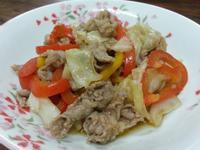 甜椒高麗菜炒牛肉
