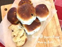 蜂蜜優格小麵包 - 簡單揉低溫冷藏發酵