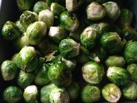 Brussels Sprout烤球芽甘藍