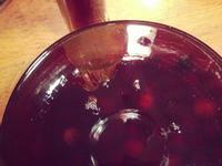 味道福爾摩莎。可遇不可求的自家製樹梅酒