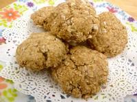 《永新沙拉》燕麥肉桂椰子口糧餅乾~高纖