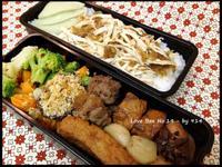 【深夜食堂】紅蔥頭蝦醬雞絲飯