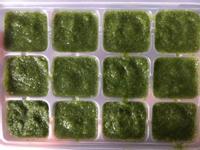 【副食品】油菜泥 電子鍋烹飪