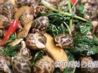 『沙茶鳳螺』15分鐘完成台灣美味經典熱炒