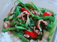 沙茶豬肉燴飯-手繪食譜