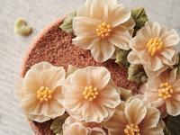 絕美!韓式擠花教科書 - 蒸糕蛋糕做法