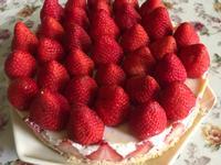 ♡草莓乳酪蛋糕♡