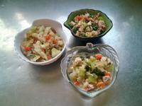 鮮食🐾白菜蒸魚 雙菜拌肉 蒲瓜蒸雞