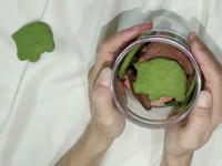 胖嘟嘟饼干(绿茶)