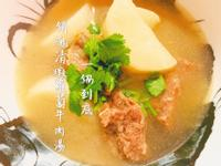 一鍋到底銷魂清燉蘿蔔牛肉湯