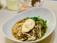 沙茶舞菇方便麵【好菇道營養料理】