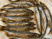 香烤柳葉魚