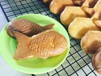 卡士達鯛魚燒🐟(小v)
