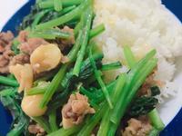 沙茶波菜牛肉飯