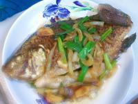 醬燒吳郭魚