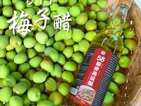 DIY梅子醋【58藜麥高粱醋】