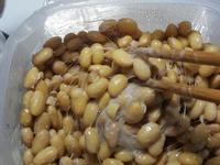 超簡單的省錢自製納豆