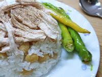 土耳其雞肉飯