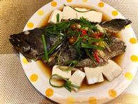 《料理簡單做》樹子清蒸魚