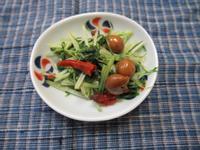 樹子水菜(mizu-na)