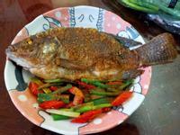 香煎吳郭魚