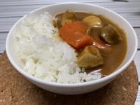 蔬食咖哩(佛蒙特咖哩)