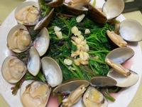 上湯蛤蠣莧菜