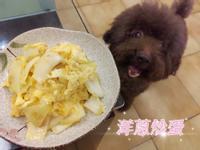 【家常料理】洋蔥炒蛋👍簡單好吃