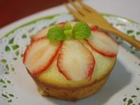 素食蛋糕~(無蛋版.奶素蛋糕)