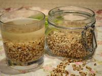 炒薏米水 (祛濕排毒秘方)