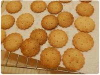 無蛋餅乾の香草奶香米餅乾