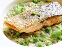 烤鮭魚佐青豆薄荷燉飯