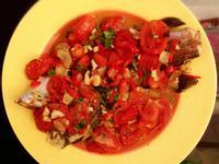 義式白酒蕃茄燴煮魚