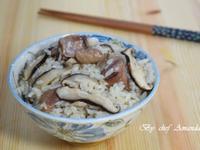 麻油雞飯~野飼崎雞
