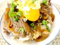 有心食譜:日式鴕鳥沙朗丼