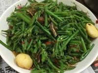 干貝醬炒龍鬚菜