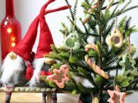 親子廚房~聖誕系列之水晶玻璃餅乾