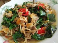 塔香孔雀蛤