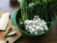 ▍低GI排毒 ▍波菜鴻喜菇