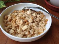 醬煮板豆腐碎 (累到只剩一點力氣的食譜)