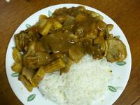新手入門*日式雞肉咖喱飯