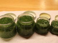 松子羅勒青醬製作