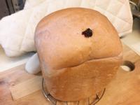 火龍果皮汁橙香吐司《麵包機》