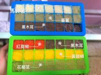 副食品冰磚(六個月)