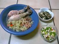 鮮食🐾仿人參雞 地瓜葉炒肉 敏豆沙拉