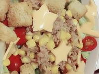 鮪魚玉米起司番茄蒜味麵包塊生菜萵苣沙拉