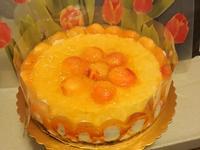 杏桃生乳酪蛋糕