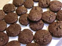 濃情巧克力豆餅乾